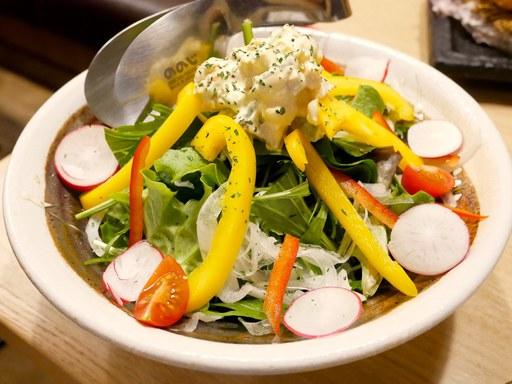 13種類の光圀サラダ